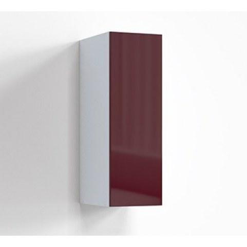 Шкаф навесной 300 цвет 1 Верба, Г-ШН-2-2