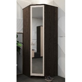 Шкаф угловой Дуэт, с зеркалом ПД5З, венге