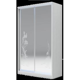 Шкаф-купе 2-х дверный 2300х1500х620 два зеркала, рисунок