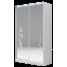 Шкаф-купе 2-х дверный 2400х1500х420 два зеркала, рисунок