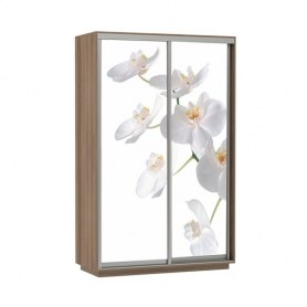 Шкаф-купе Дуо 1200x600x2400, фотопечать Белая Орхидея, шимо темный