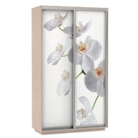 Шкаф-купе Дуо 1200x600x2400, фотопечать Белая Орхидея, дуб молочный