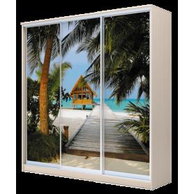 Шкаф-купе 3-х дверный 2200х2000х420, фотопечать, рисунок