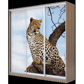 Шкаф-купе  3-х дверный 2200х1770х620, фотопечать, рисунок
